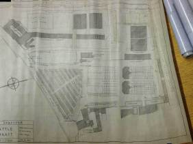 Plans for upgrade 1950