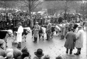 Cattlemarket 1947